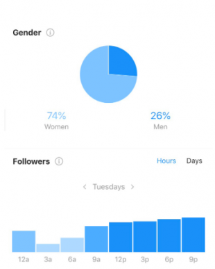 Instagram follower growth rate